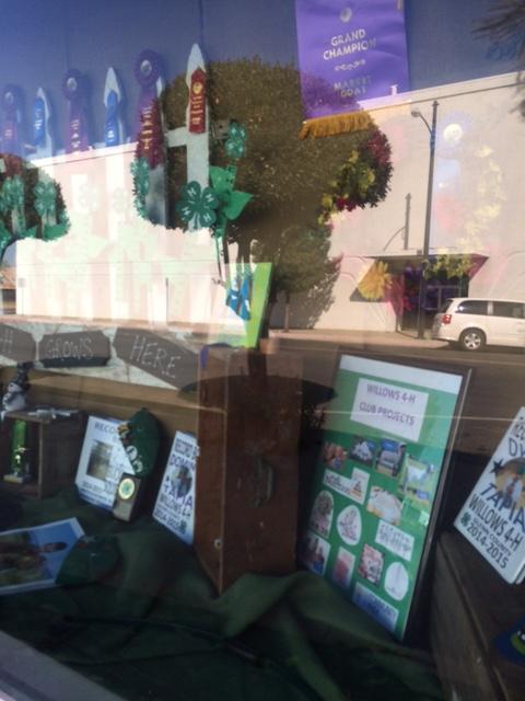 Willows 4-H Club Window Display