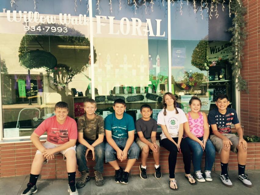 Willows 4-H Club's 1st Place Window Display
